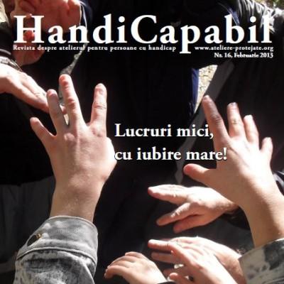 handicapabil_012013_ro