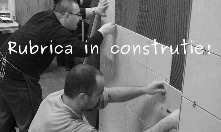 in_constructie